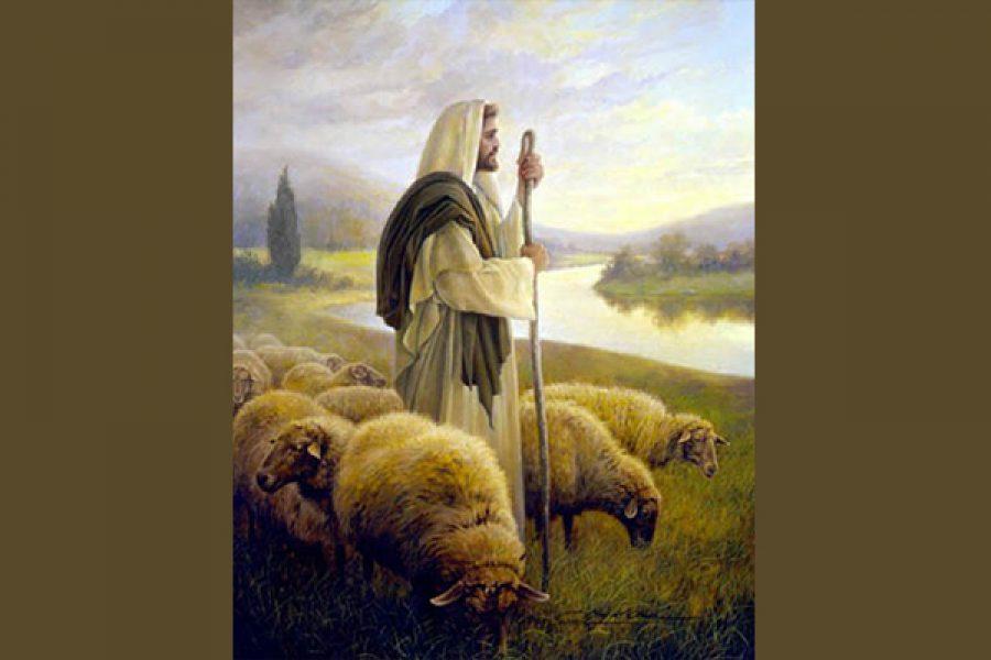 Gesù unico pastore