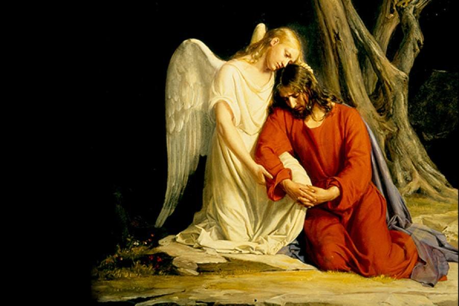 Il cristiano e la sofferenza