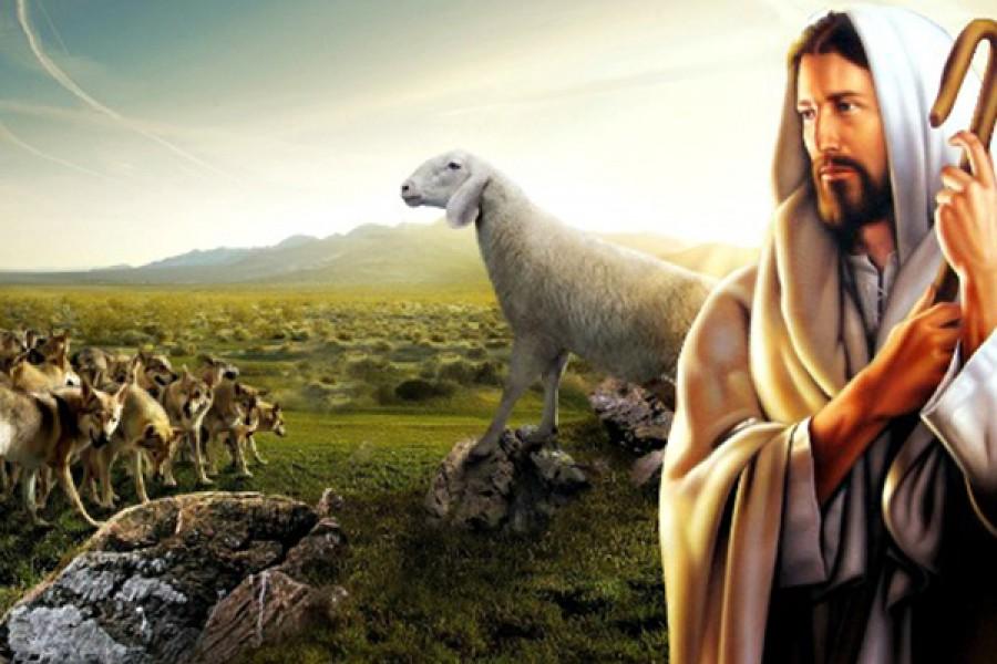 Rimanere agnelli in mezzo ai lupi