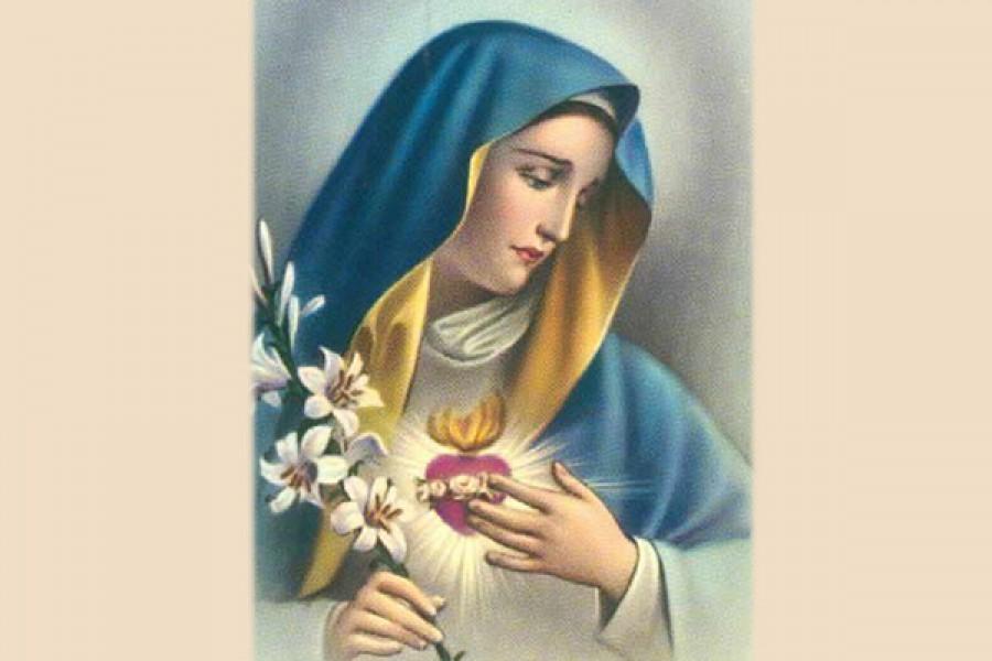 Consacrarsi al Cuore Immacolato di Maria Santissima - 2