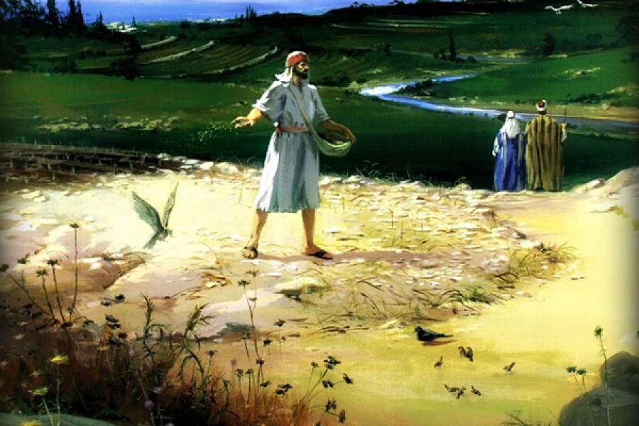 """""""A voi è dato conoscere i misteri del regno di Dio, ma agli altri solo con parabole, affinché vedendo non vedano e ascoltando non comprendano."""""""