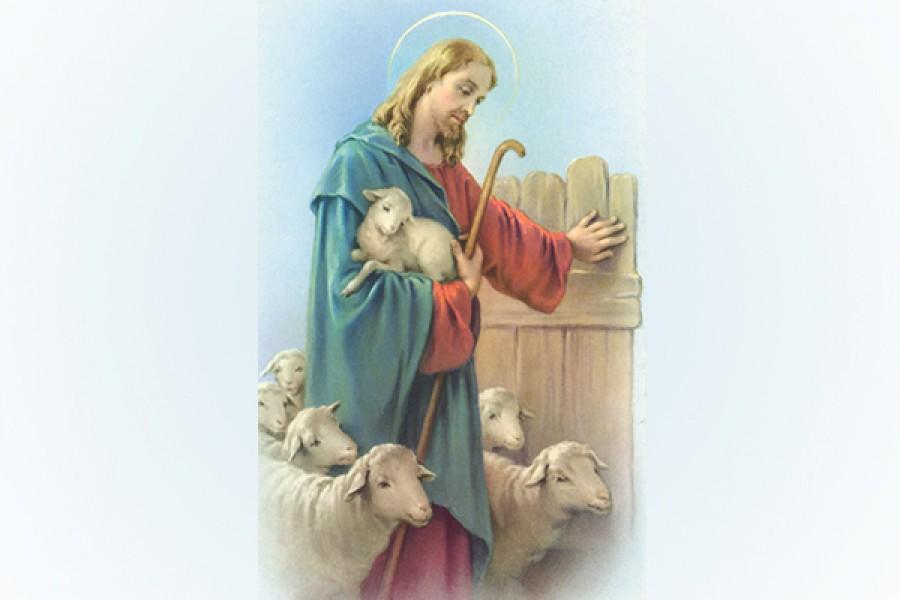 Il Buon Pastore e le sue pecore