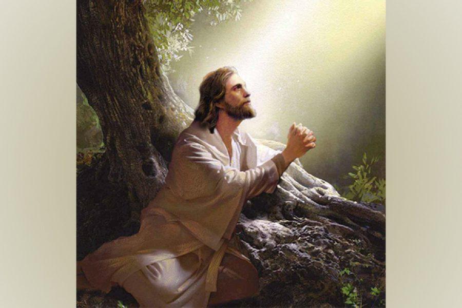 Solo chi vuole piacere a Dio prega veramente