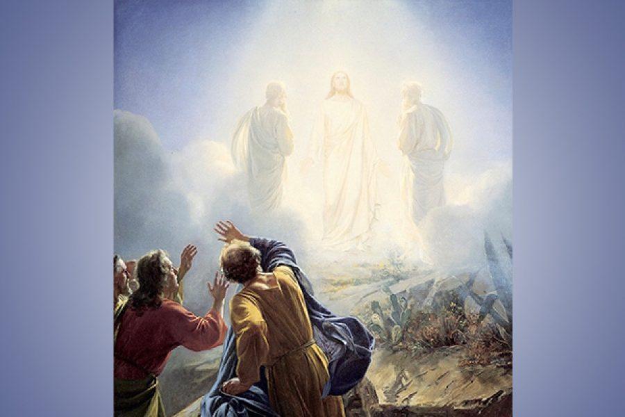 Lasciarsi portare da Gesù in disparte