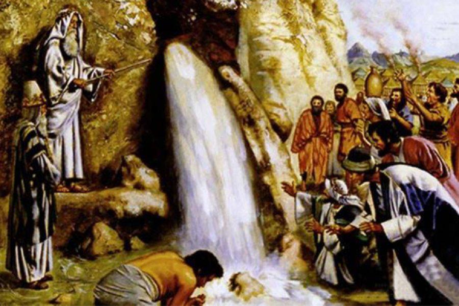 """""""Se crederai vedrai la Gloria di Dio"""" (Gv 11,40)"""