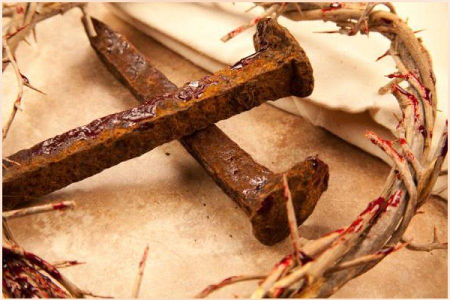 La dignità dei paramenti sacerdotali, simbolo della Passione di Cristo e delle virtù cristiane