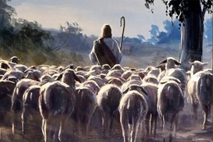 Ascoltare, conoscere e seguire Gesù