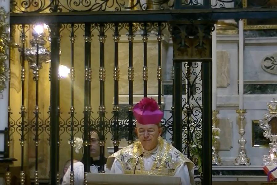 Video: Omelia di S. E. Rev.ma Mons. Athanasius Schneider a Bergamo