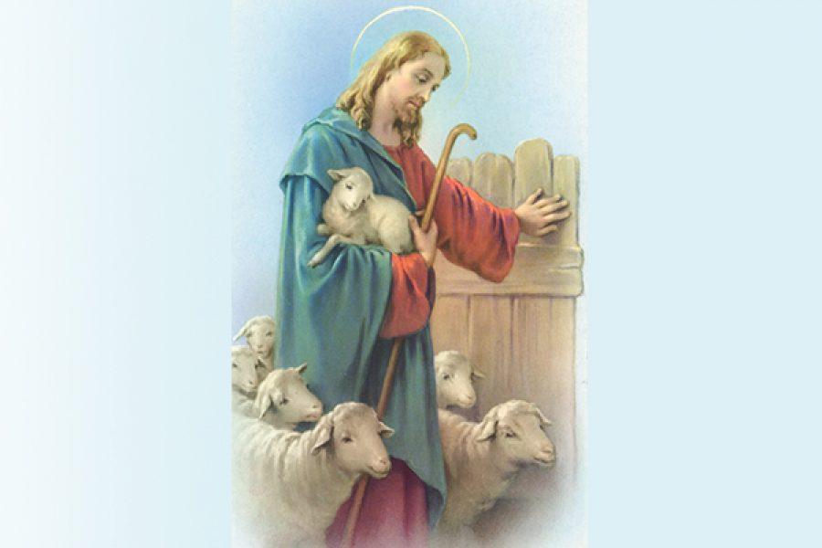 La pastorale, secondo Gesù