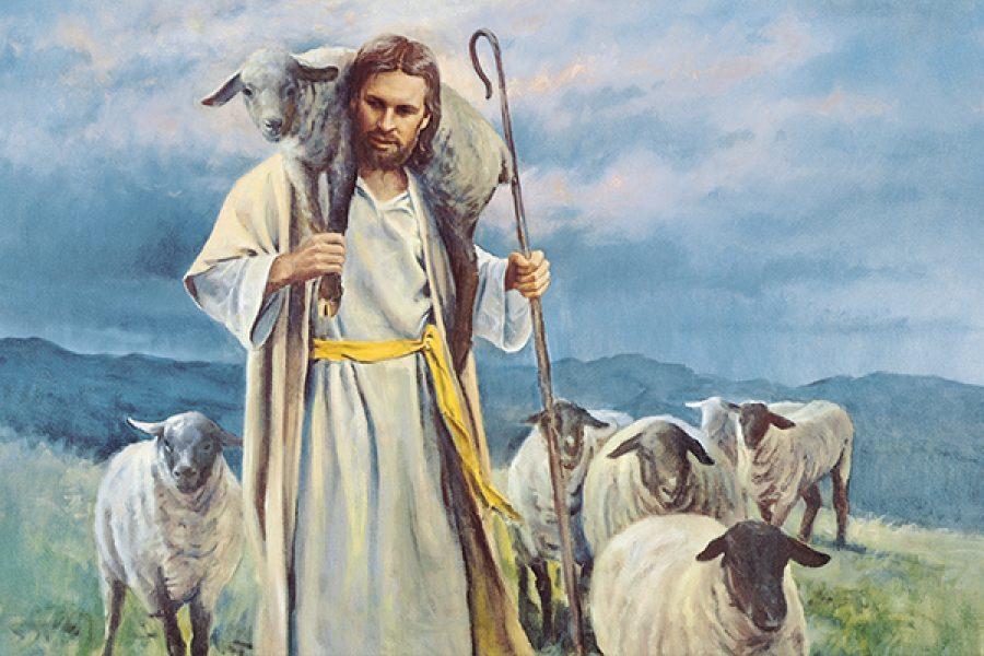 """""""Le mie pecore conoscono me"""""""