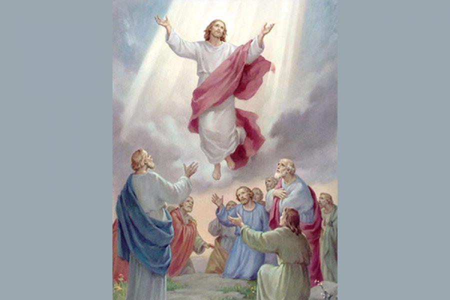 L'essenziale per Gesù: le cose riguardanti il Regno di Dio