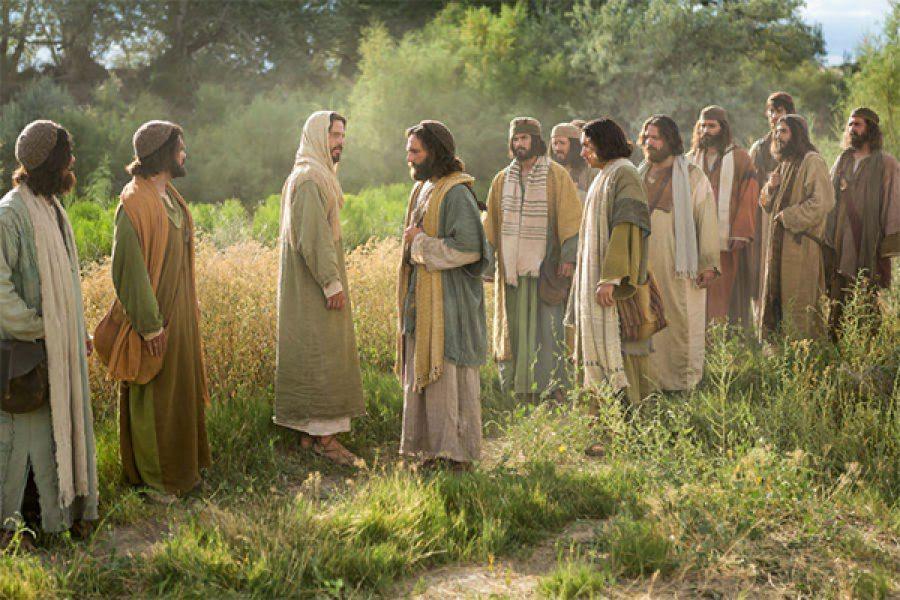 """""""Chi vuole diventare grande tra voi sarà vostro servitore"""""""