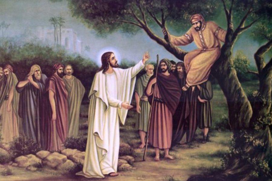 Zaccheo: modello dell'incontro con Gesù