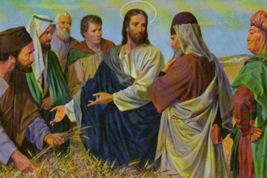 L'osservanza e lo spirito della Legge. Amare i Comandamenti
