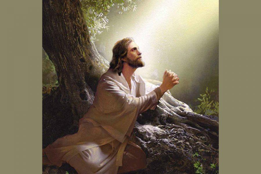 Gesù in preghiera: Lampada eterna dinnanzi al Padre come il cero del Tabernacolo