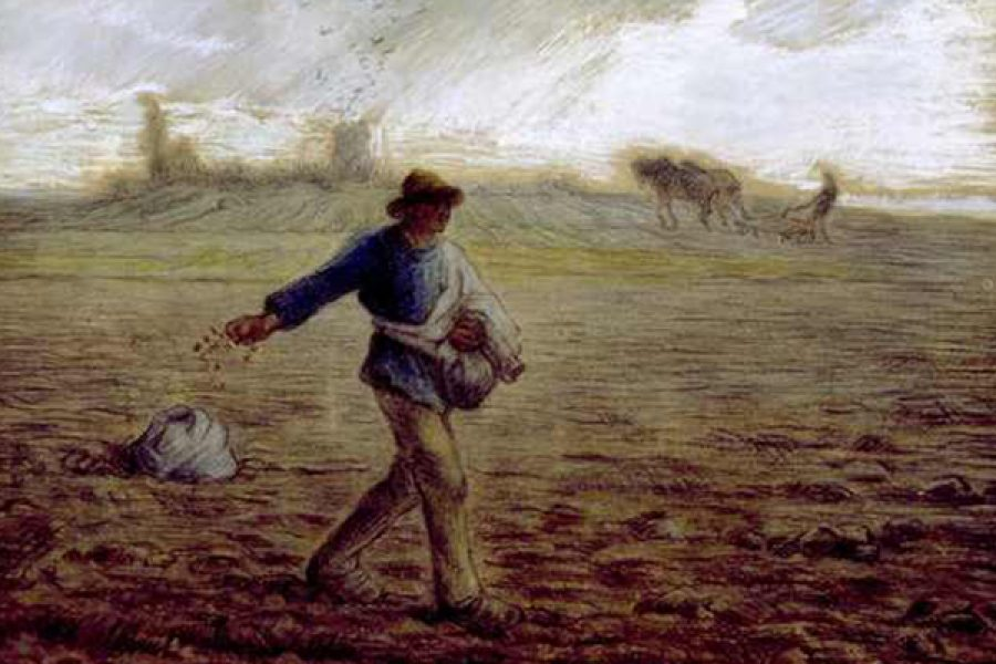 La parabola del Seminatore e i quattro terreni