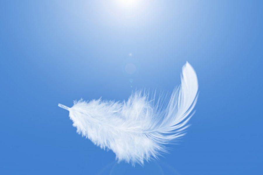 La delicatezza e la carità: saper tacere per il bene dell'altro