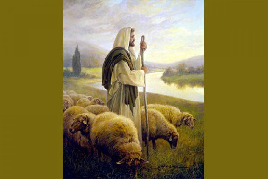 Io faccio parte del gregge di Cristo?