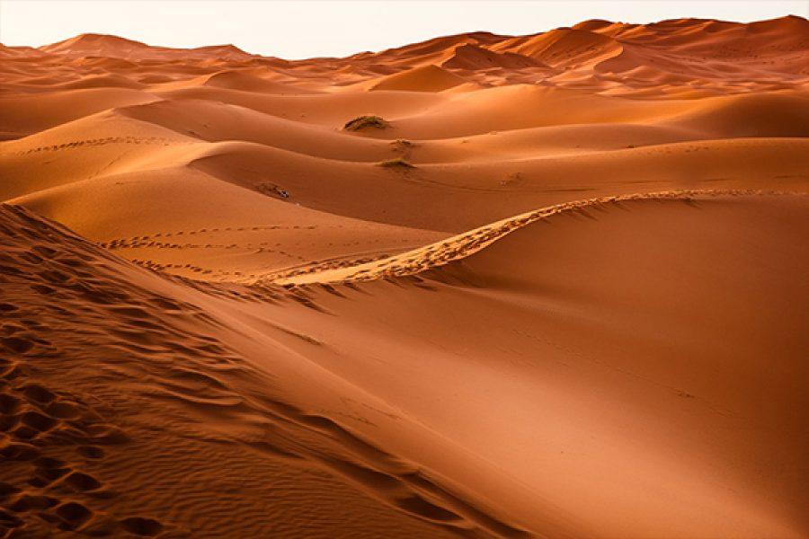 Il deserto: scuola di maturazione, solitudine e silenzio