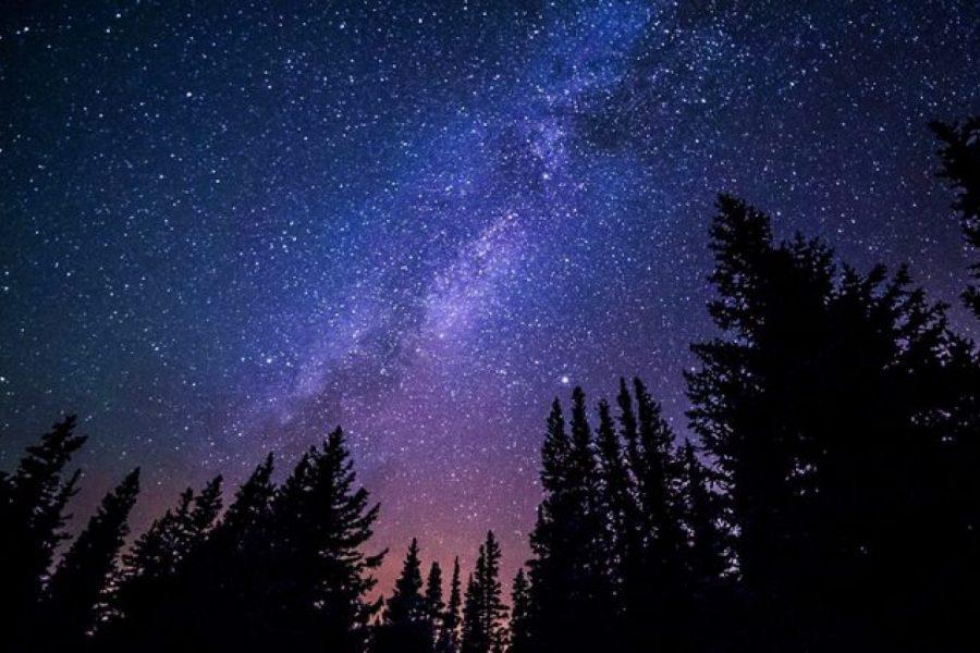 Gli atti di misericordia di Dio sono le stelle nella notte della storia dell'uomo