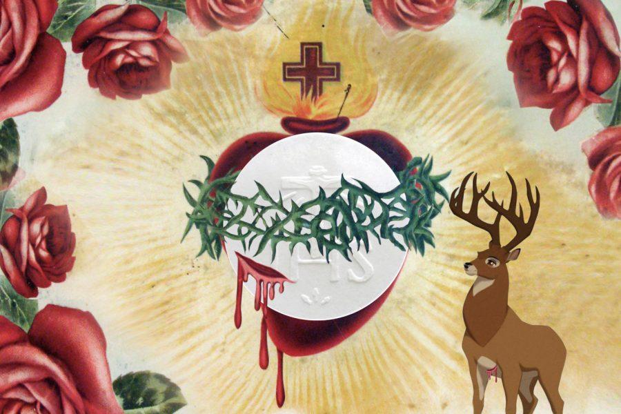 Il nostro cuore non deve smettere mai di ansimare come il cervo ferito rivolto al Cuore di Cristo