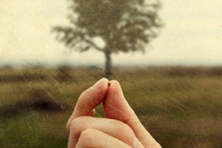 Il pensiero della vita eterna sostiene il dramma della sofferenza