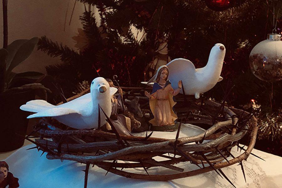Come colombe sulle spine: la bellezza e il significato della Santa Messa