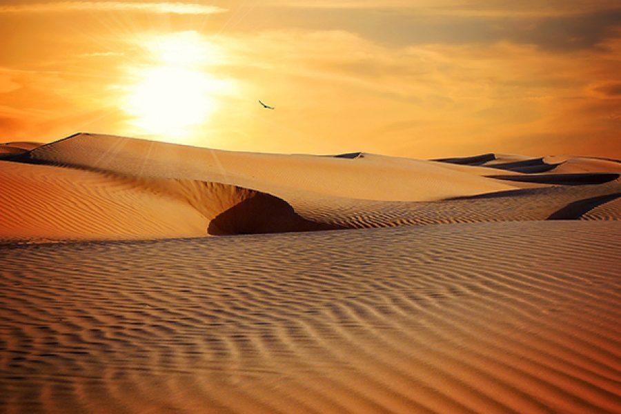 Deserto: il luogo del desiderio
