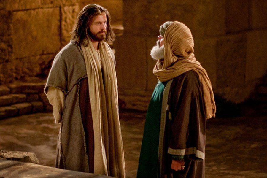 Chi ama la Verità viene alla Luce
