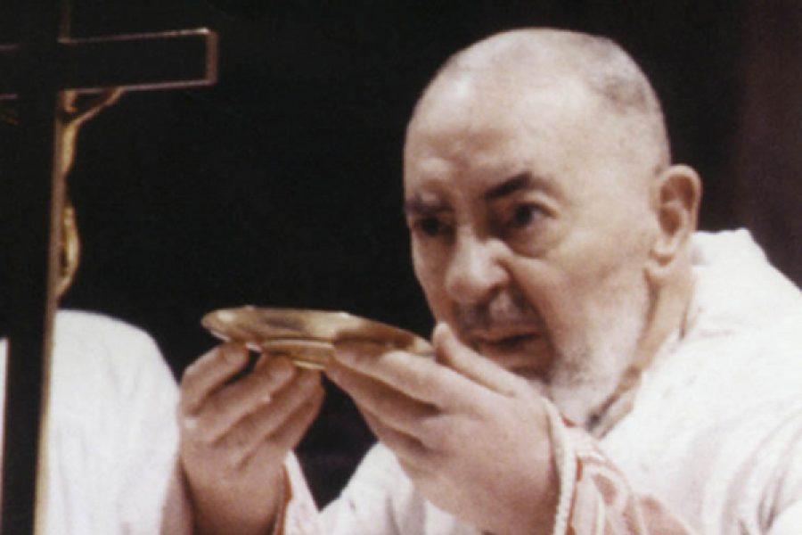 S. Pio da Pietrelcina e gli alcioni