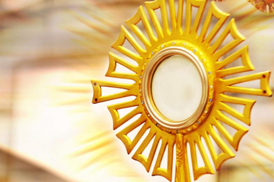 Beata Maria Candida dell'Eucarestia: la sofferenza della mancanza di Gesù