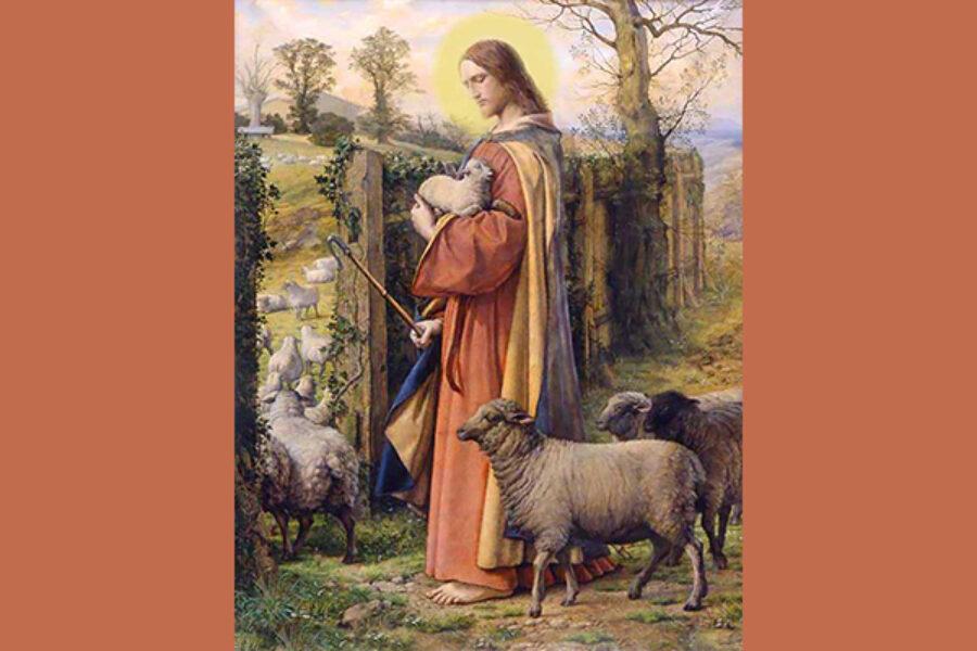 Gesù, la porta e i ladri...