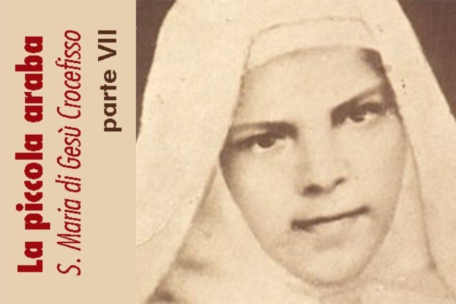 La piccola araba, S. Maria di Gesù Crocefisso: parte VII